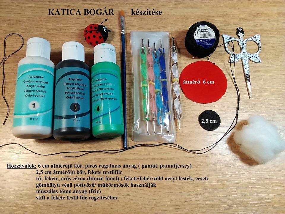 2akatica-bogár-1