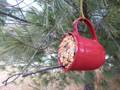 14-birdfeeder-coffee-mug-dementia-craft